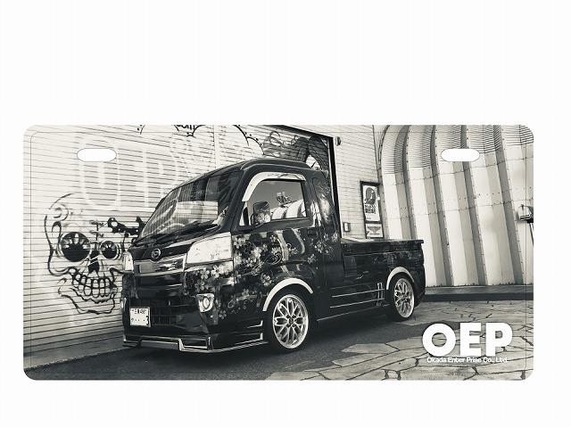 OEP0210-1.jpg