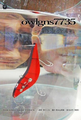 owl202002b