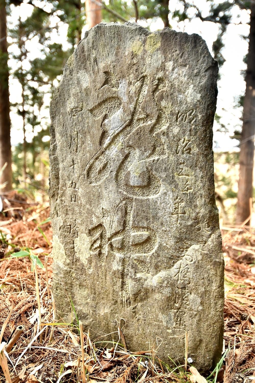 DSC_9334s龍神