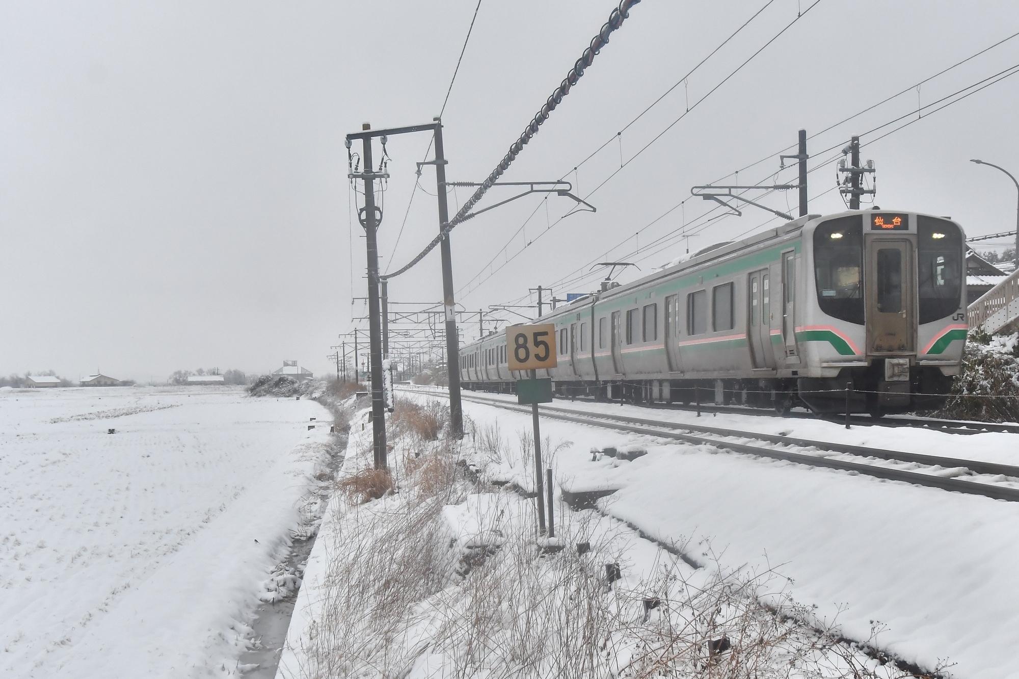 DSC_7612-2s.jpg