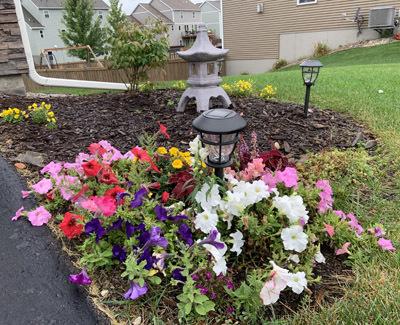 garden091119.jpg