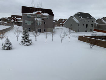 snow11271901.jpg
