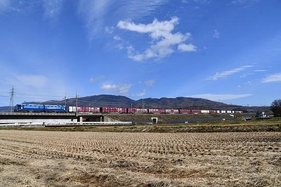 2019年11月19日撮影 東線貨物2083レ 山をバックに編成