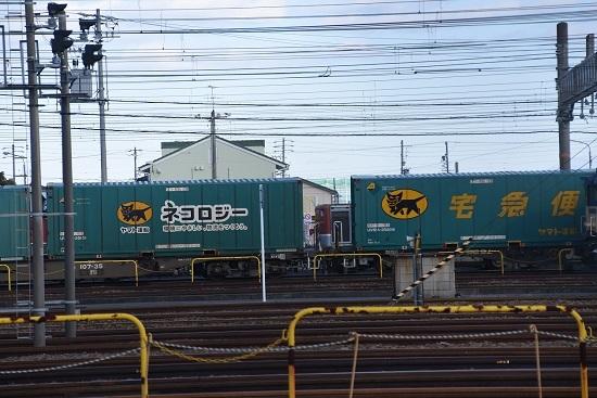 2019年12月28日撮影 稲沢にてネコロジーのコンテナ