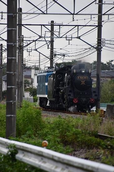 2019年9月13日撮影 秩父鉄道 デキ303+C58-363号機後撃ち