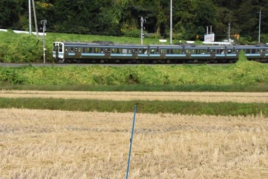 2019年9月29日撮影 飯田線210M 211系とトンボ