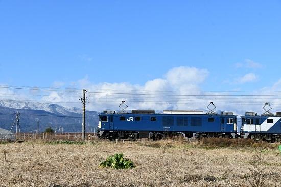 2019年11月29日撮影 西線貨物8084レ EF64-1034号機