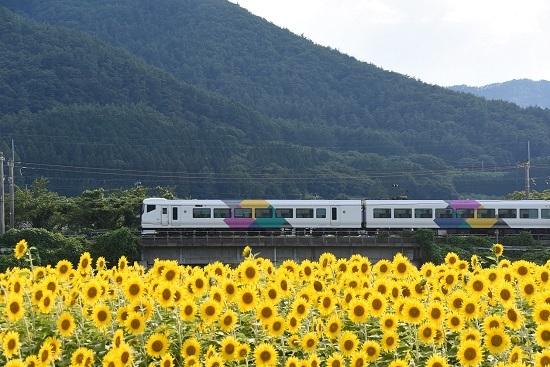 2019年8月10日 E257系 あずさ77号返却