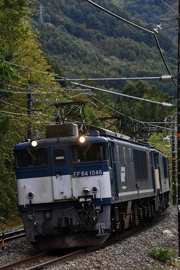 2019年10月26日撮影 西線貨物8883レ 広島更新色+原色