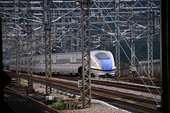 2019年9月22日 E7系上越新幹線 朱鷺色ライン