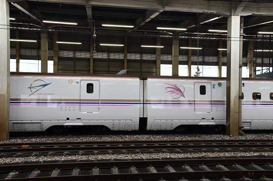 2019年9月22日 E7系朱鷺色のラインとシンボルマーク
