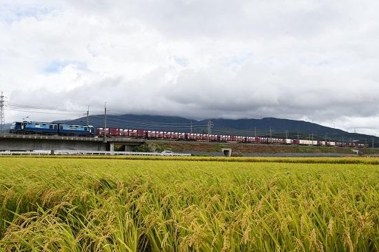 2019年9月23日 東線貨物2083レ