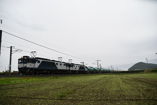 DSC_4156-1.jpg