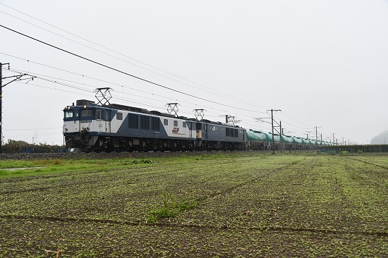2019年10月29日撮影 西線貨物8084レ