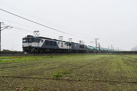 DSC_4372-1.jpg