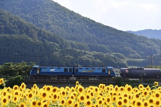 2019年8月12日 東線貨物5460レ EH200-5号機