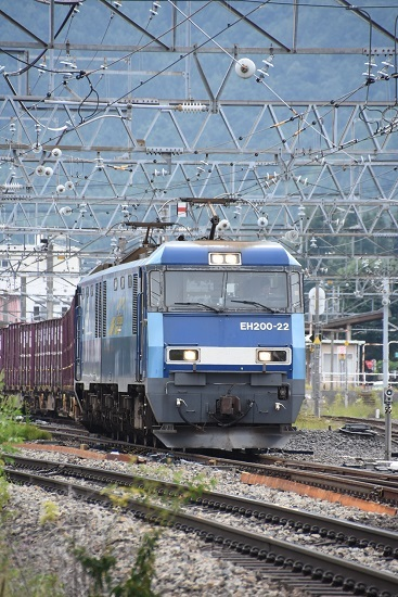 DSC_6758-1.jpg