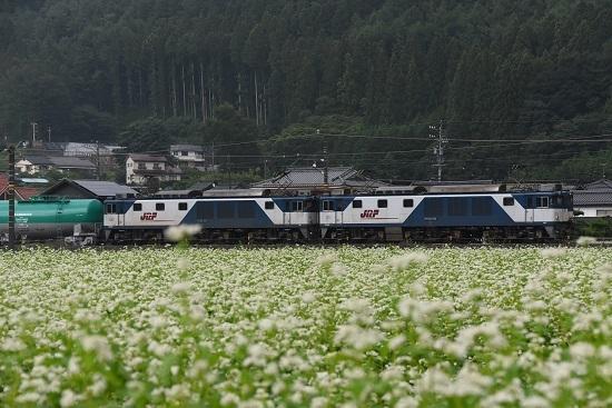 2019年8月29日 西線貨物8084レ EF64-1004+1013号機