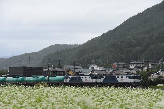 2019年8月30日 西線貨物8084レ EF64-1009+1044号機