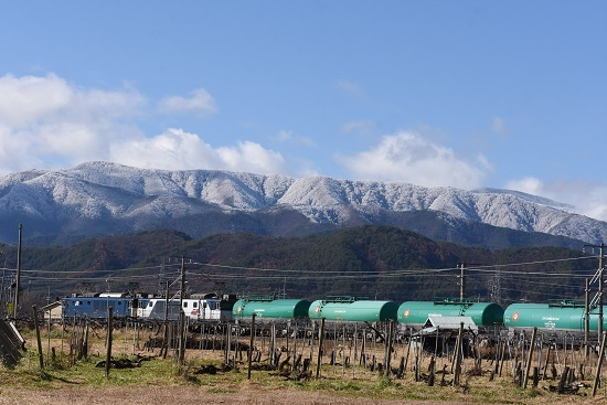 2019年11月29日撮影 西線貨物8084レ 里山の初雪と