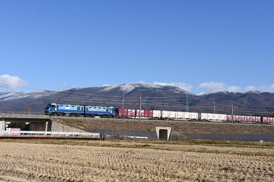 2019年11月29日撮影 東線貨物2083レ 里山の初雪と