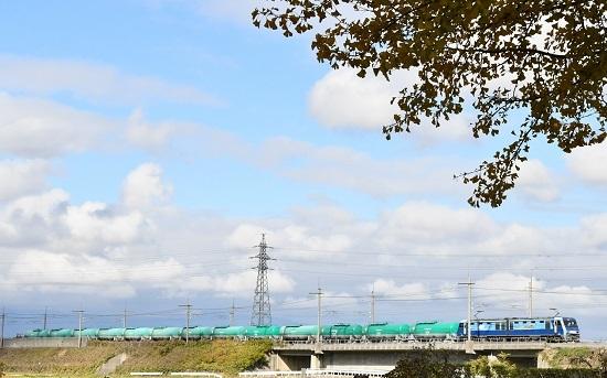2019年11月8日撮影 東線貨物2080レ