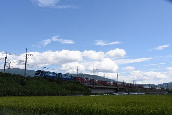 2019年8月31日 東線貨物2083レ 青空をバックに