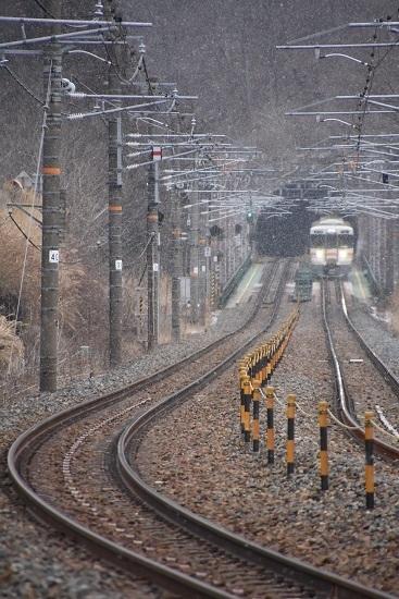 2020年2月8日撮影 1826M 雪が降る中を行く313系がトンネル飛び出し