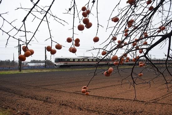 2012年12月3日撮影 1004M 383系と柿