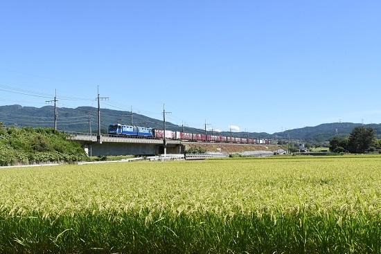 2019年9月7日 東線貨物2083レ EH200-24号機