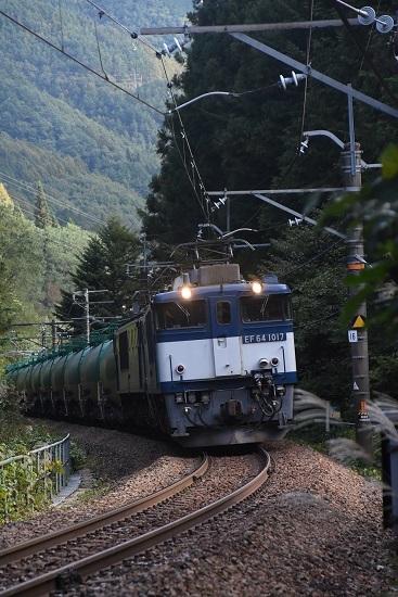 2019年10月17日撮影 西線貨物6088レ EF64-1017号機