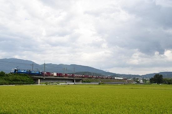 2019年8月29日 東線貨物2083レ コキ編成