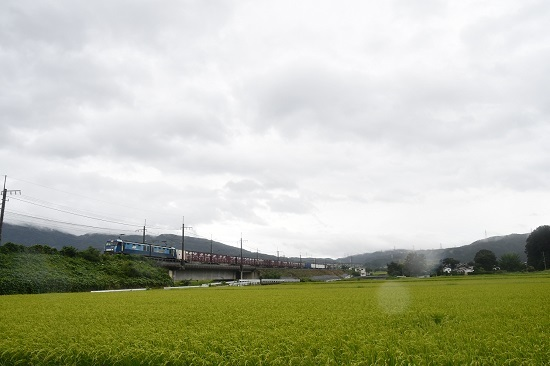 2019年8月30日撮影 東線貨物2083レ みどり湖にてワイド