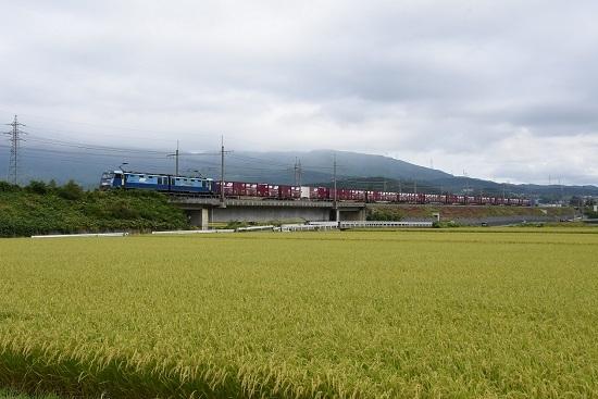 2019年9月16日撮影 東線貨物2083レ みどり湖