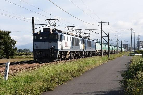 DSC_9909-1.jpg