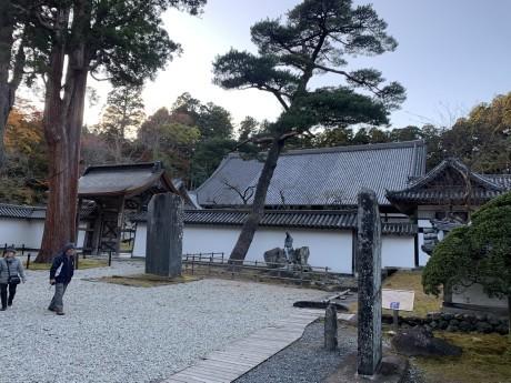 20191123松島 (6)
