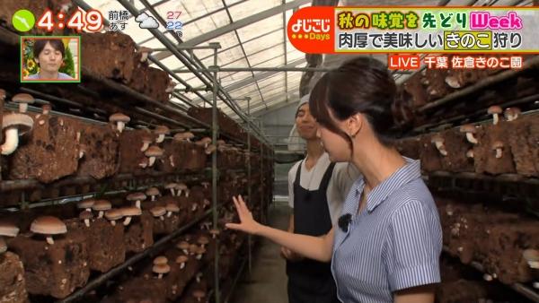 『よじごじDays』の中継で食レポをする森香澄!! (11)
