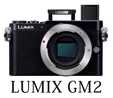 LUMIX GM2 予想図