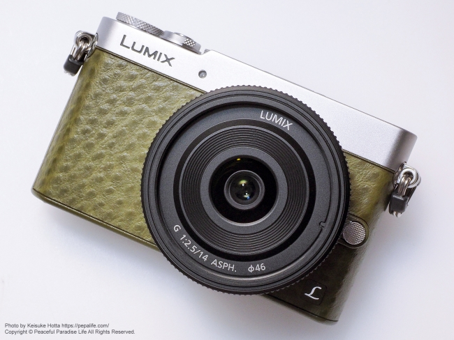 【止まらない衝動】 LUMIX GM5 を購入!