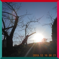 DSCN0934.jpg