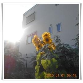 DSCN1473.jpg