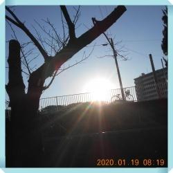 DSCN1873.jpg