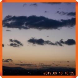 batch_DSCN8550.jpg