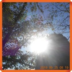 batch_DSCN8813.jpg