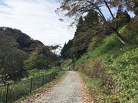 道20191110