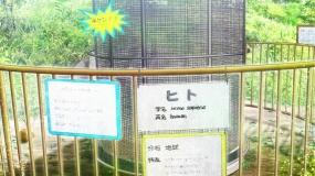 oshi0321.jpg
