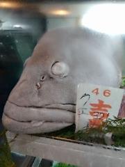 【新店】JAPANESE FISH NOODLE うみのチカラ-22