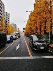 【新店】吾ガ輩ハネコ-2