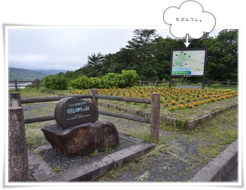 天栄村観光マップなジム