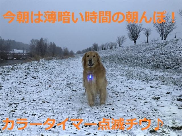 IMG_5386_PPP.jpg